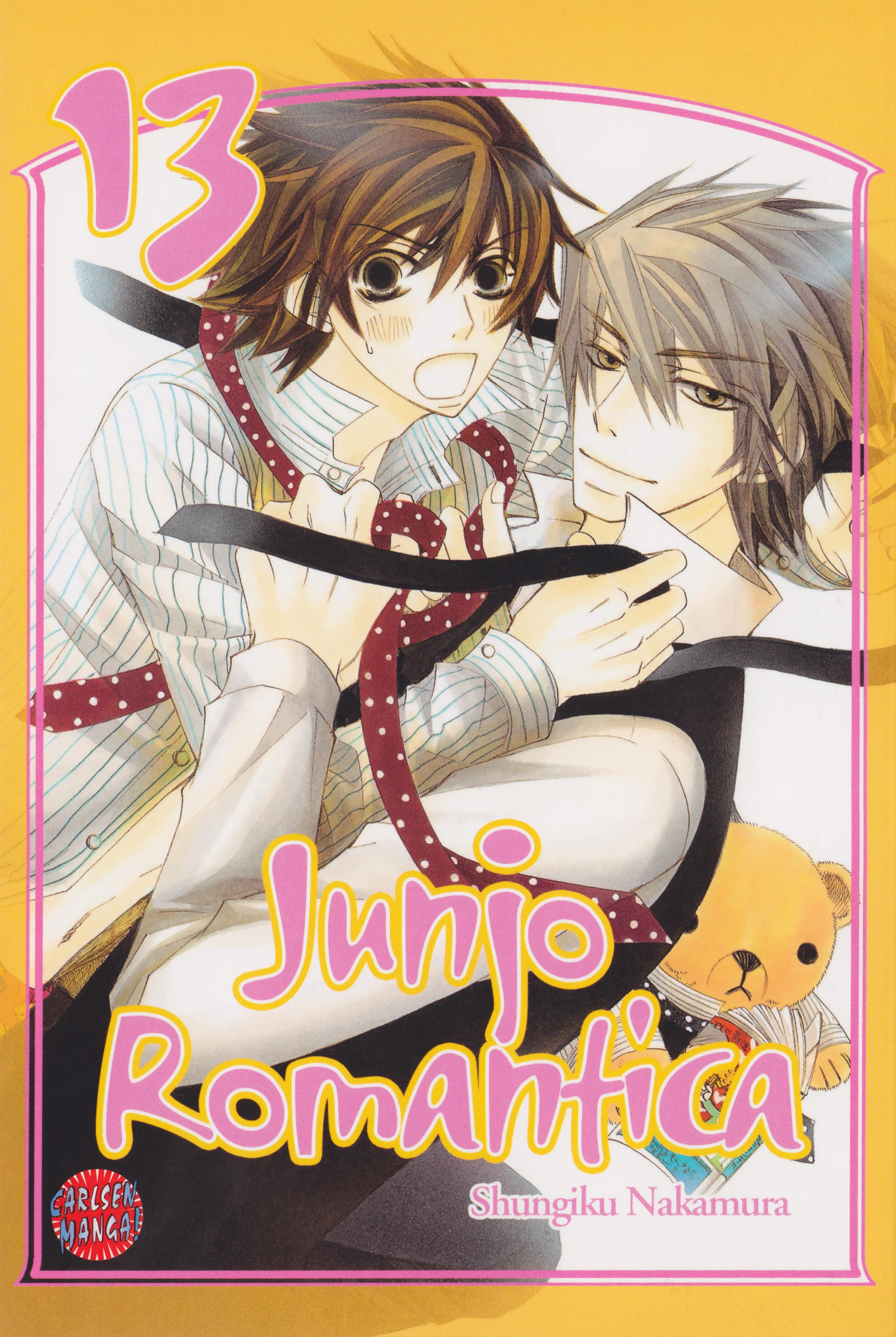 Junjou Romantica: Junjo Romantica Cover 13 - Minitokyo