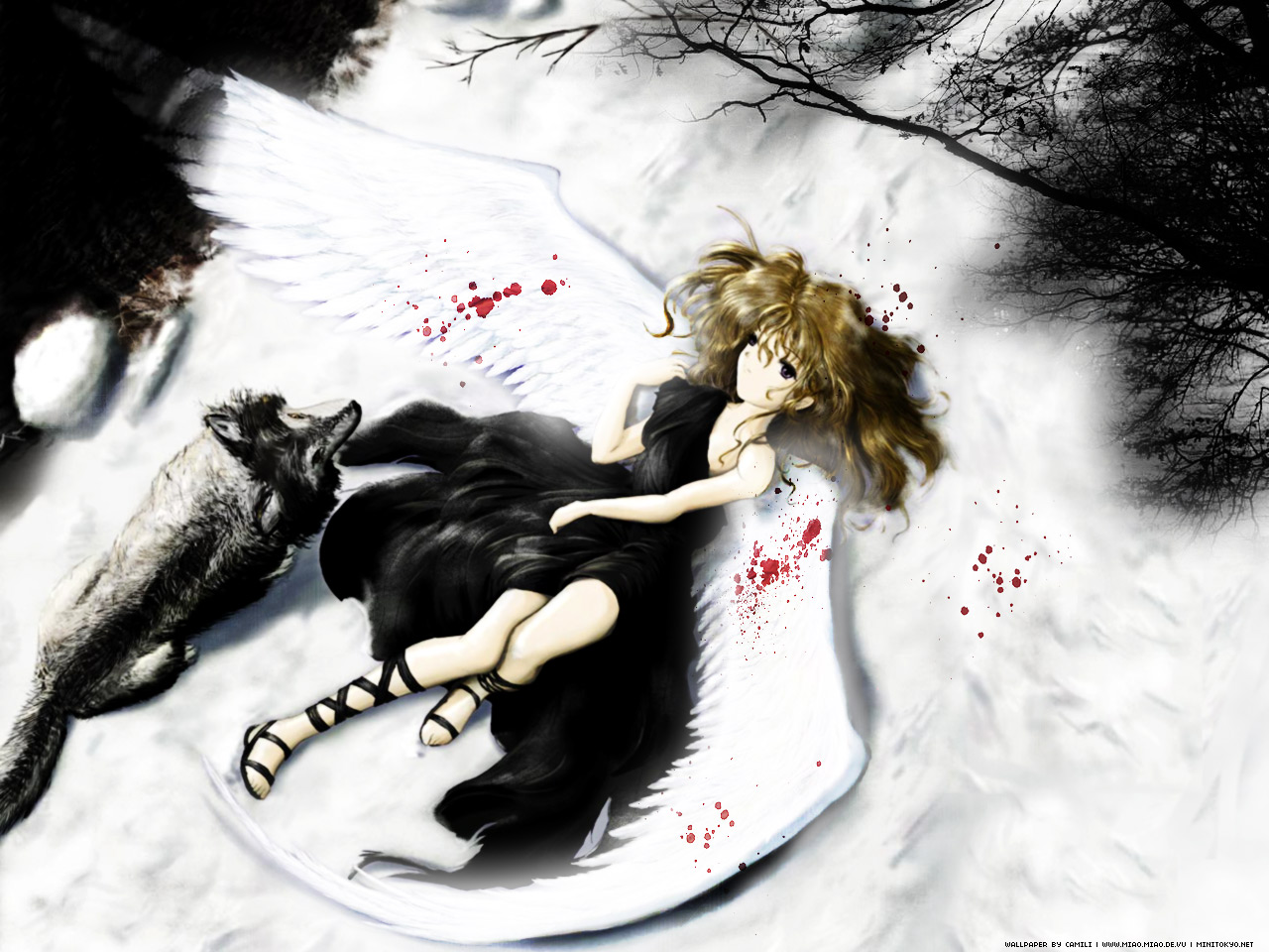 Anime Wallpaper: Fallen Angel - Minitokyo