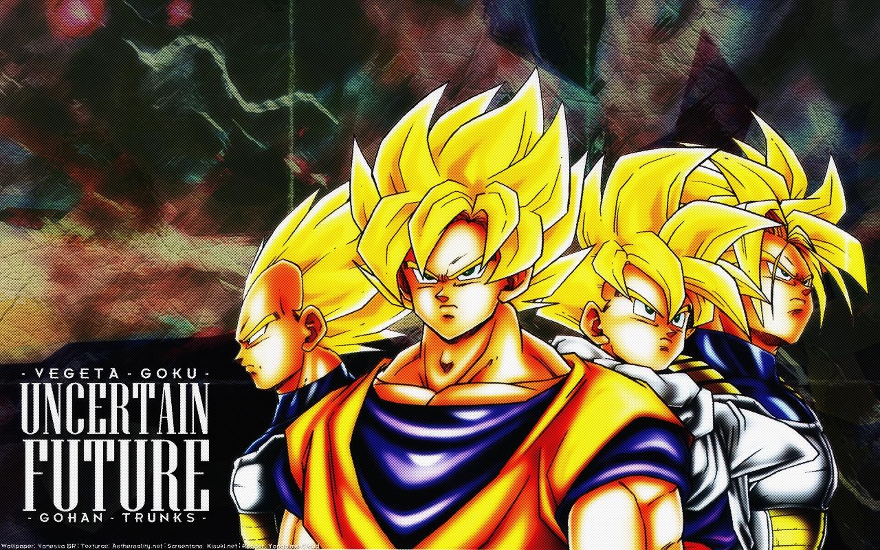 Dragon Ball Wallpaper Uncertain Future Minitokyo