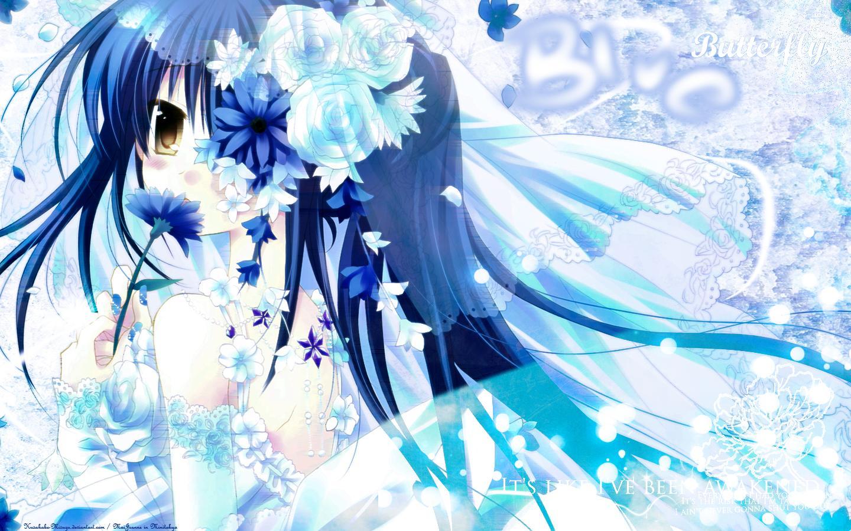 Izumi Sakurazawa Wallpaper Blue Butterfly Minitokyo