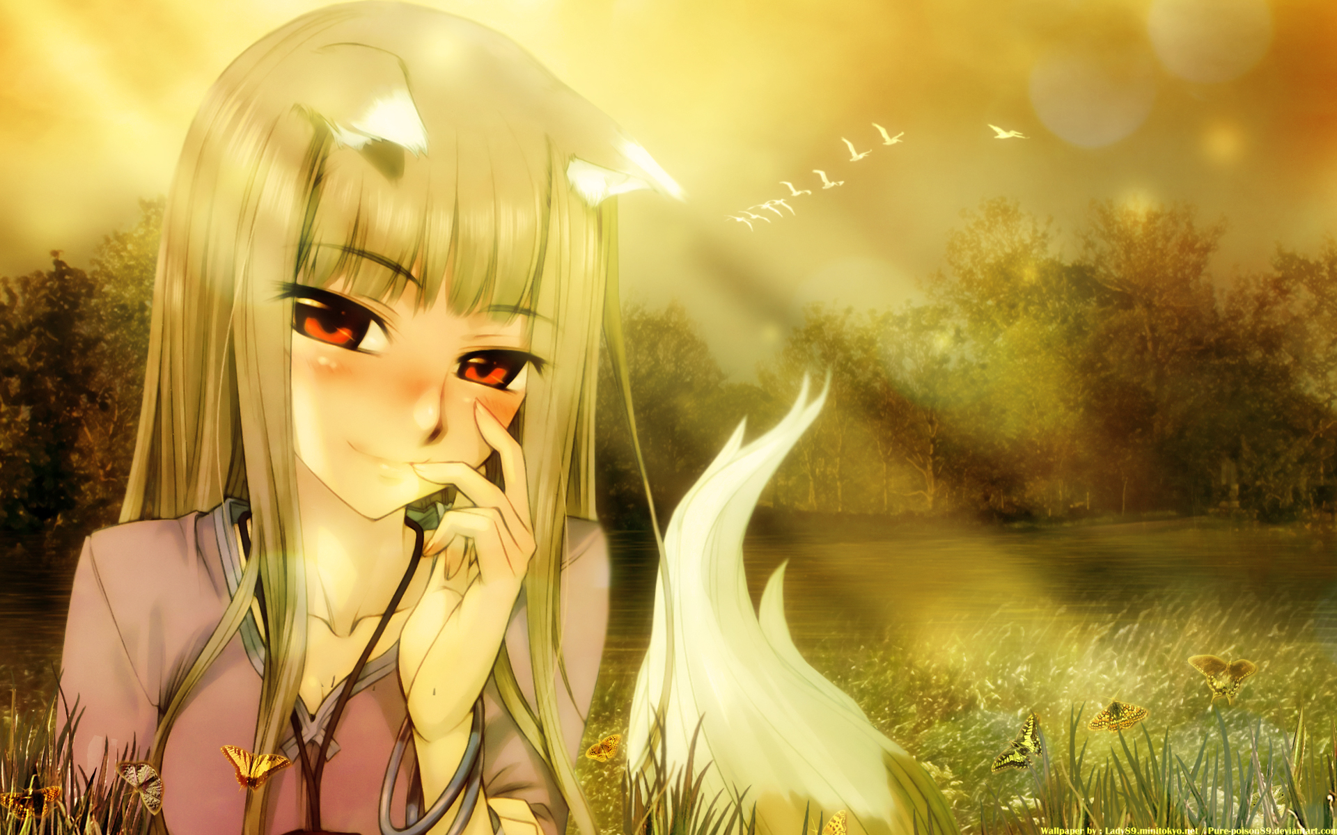 Wallpaper Anime Horo Spice and wolf Spice and Wolf Horo White