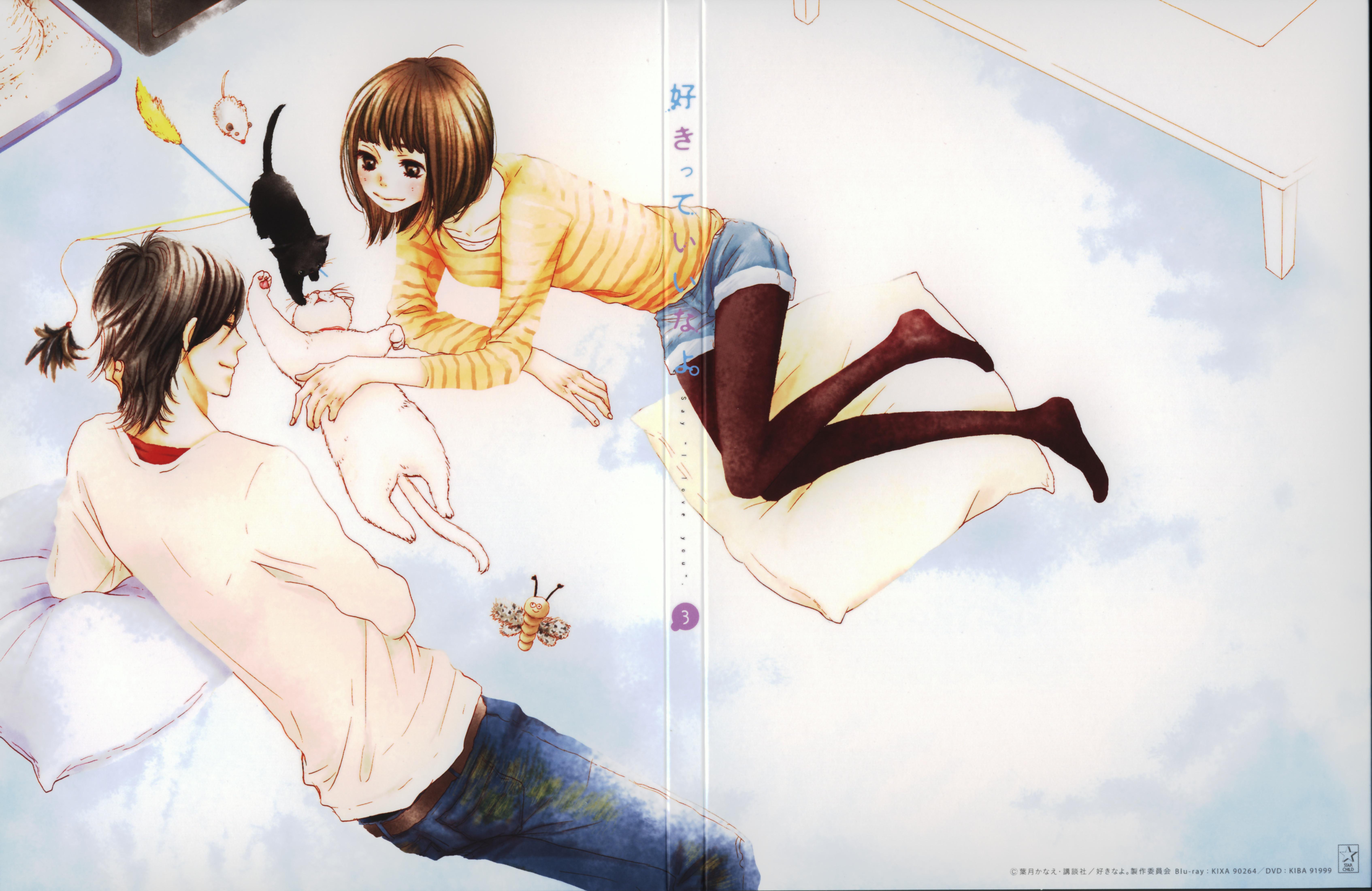 """Say I Love You: Suki-tte Ii na yo. (say """"I love you"""".) Blu ..."""