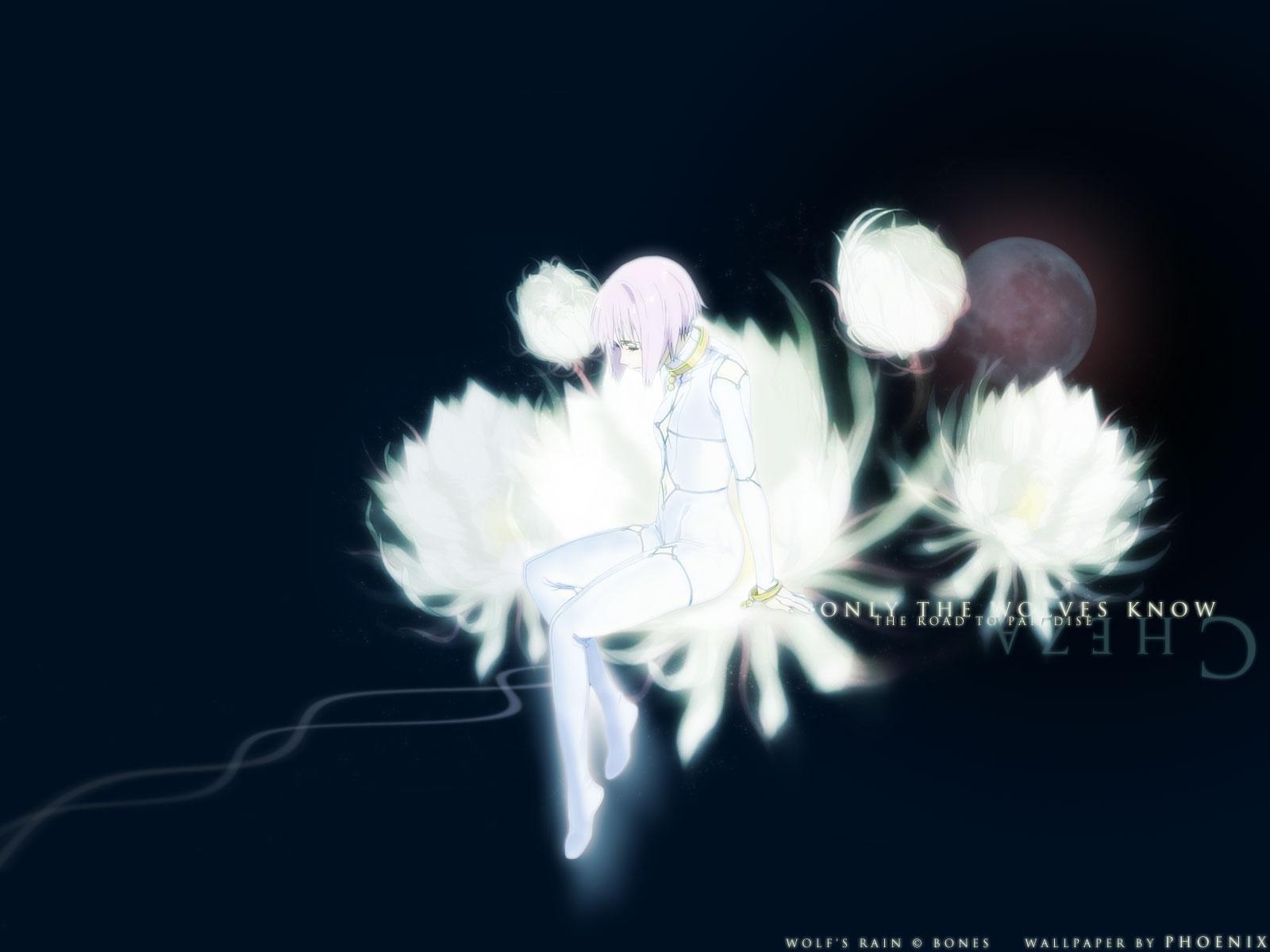 Cheza Concept Art Wolfs Rain